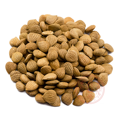 Bitter Apricot Seed